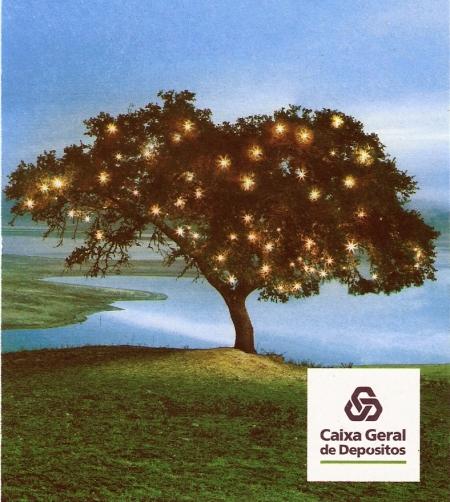 caixa-carbono-zero-2010